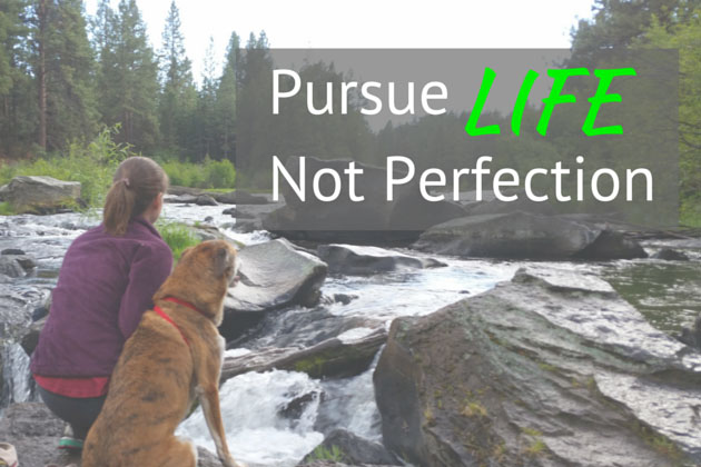 Pursue Life, Not Perfection