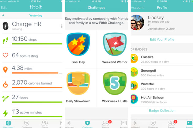 Fitbit App iPhone Screenshots