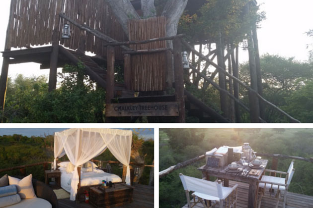 Chalkley Treehouse Safari