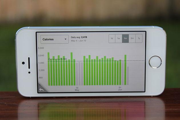 FitBit App Calorie Counter