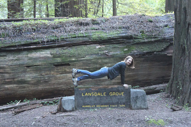 Planking at Landsdale Grove