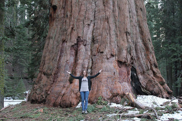 Standing in front of a giant Sequoia